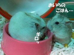 Miikuu_2